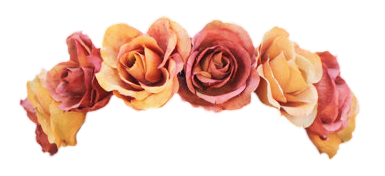 Flower Crown Png Tumblr image #42602