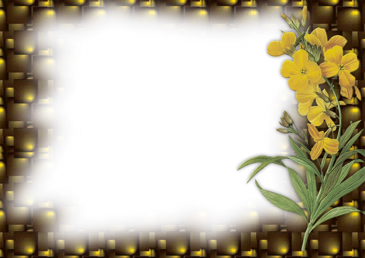 flower photo frame png