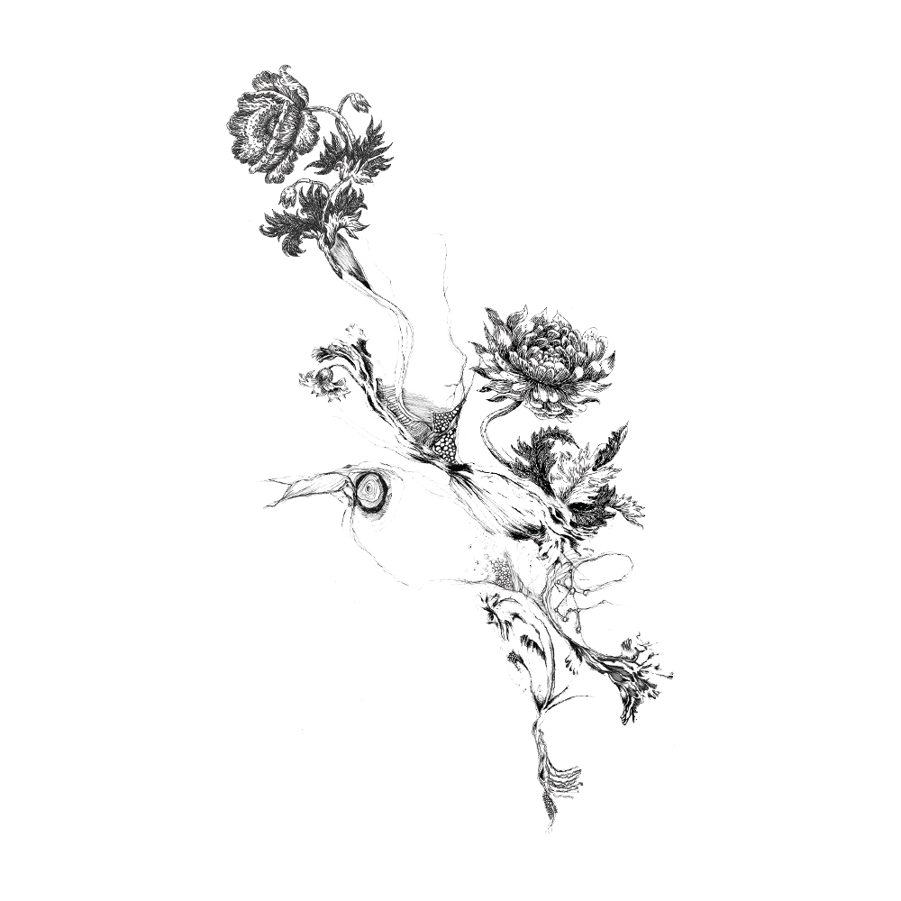 flower black and white transparent png pictures free free vector crown silhouette free crown vector art