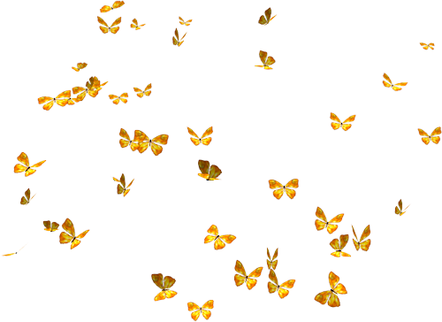 Flying Butterflies Png image #26562