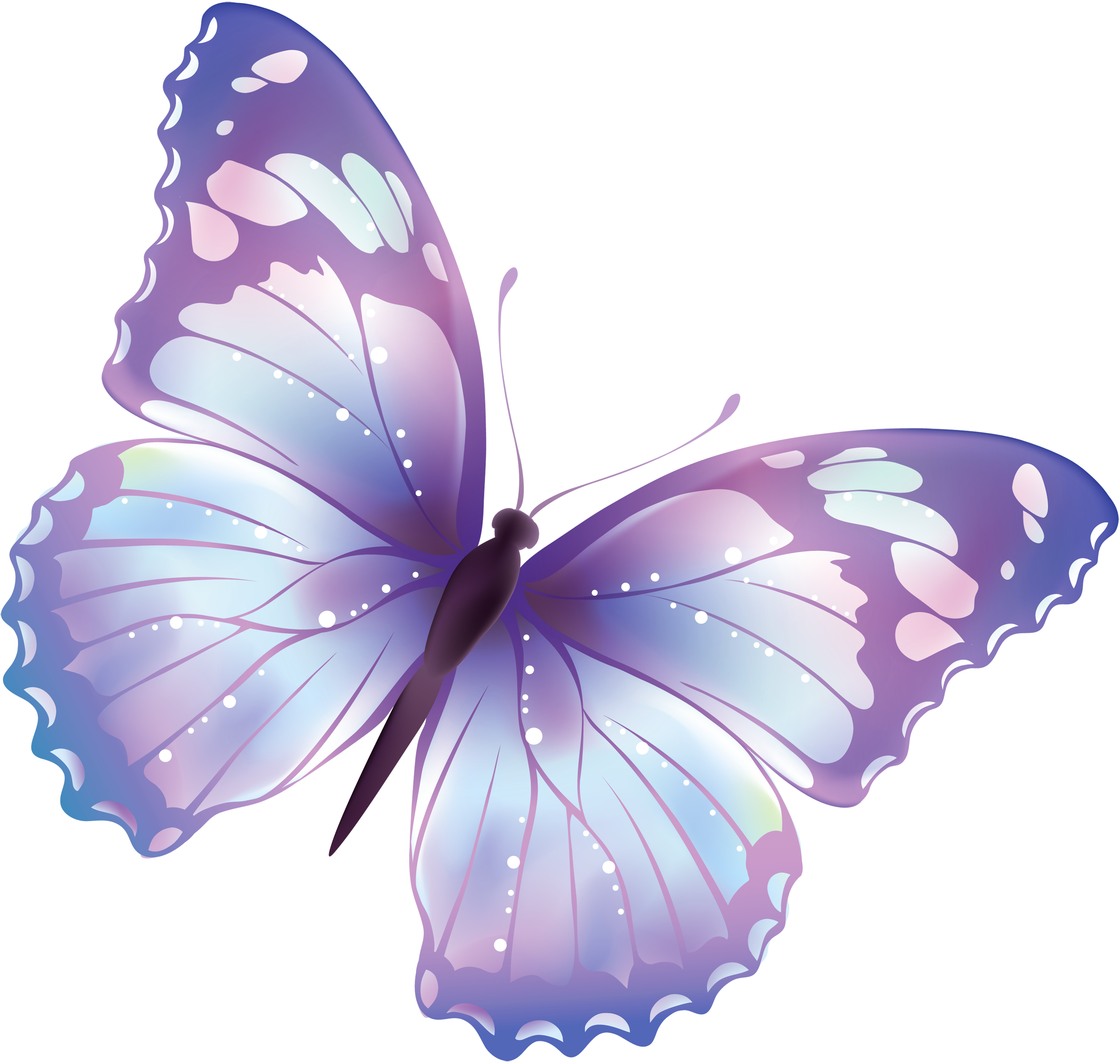 Flying Butterfly PNG image #6720