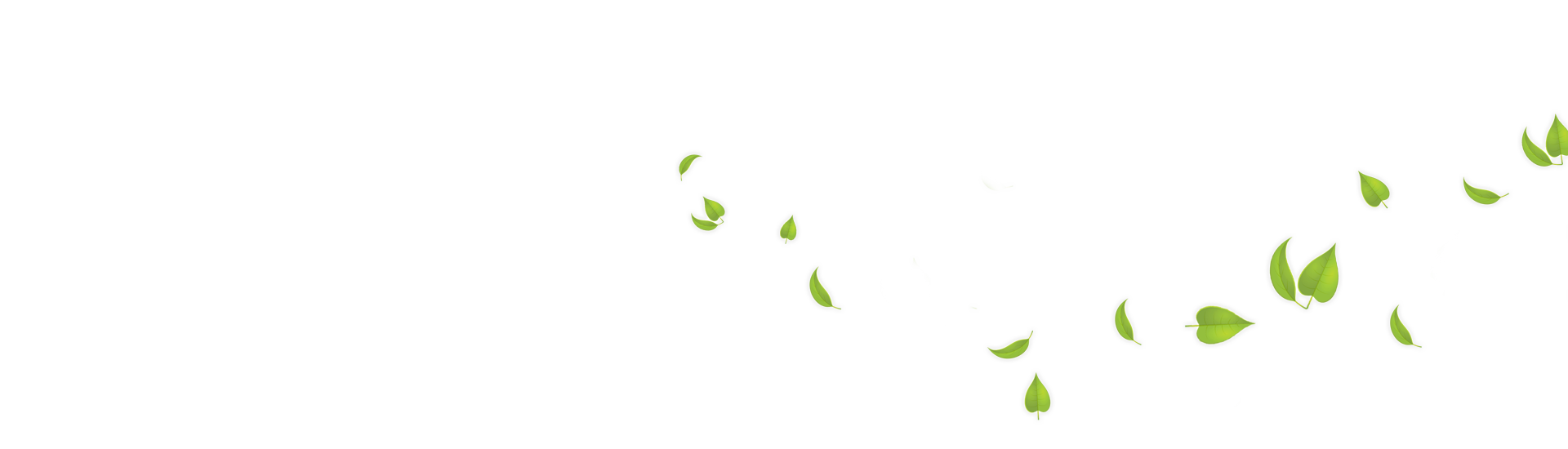 Flying Leaf Png image #44862