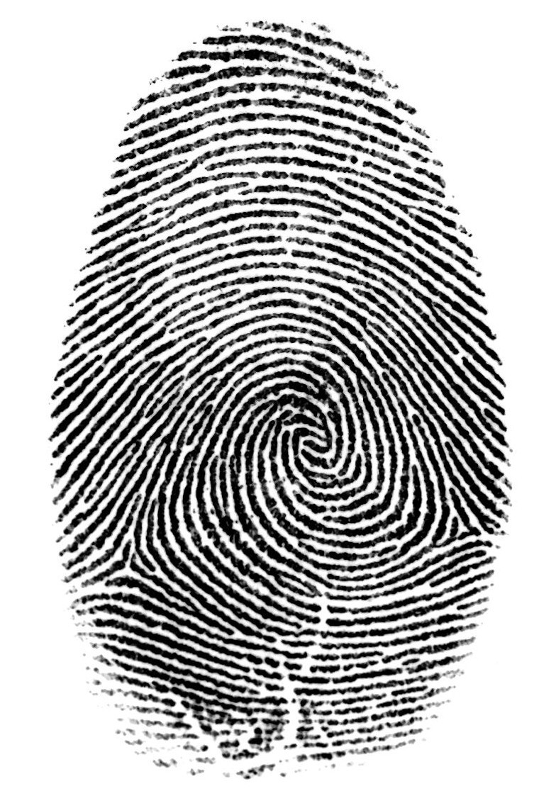 Vectors Icon Free Download Forensic image #13042