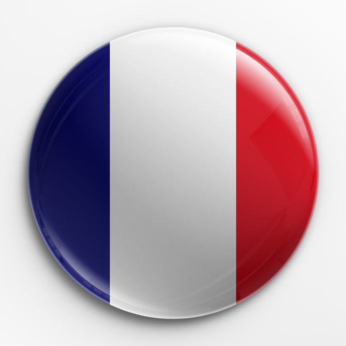 France Flag .ico