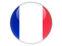 France Flag Icon image #18749