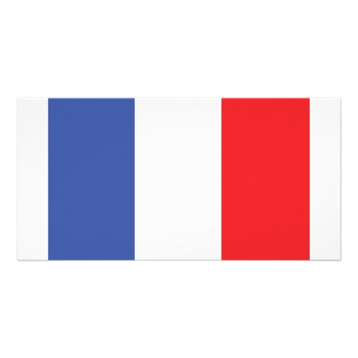 France Flag Icon image #18752