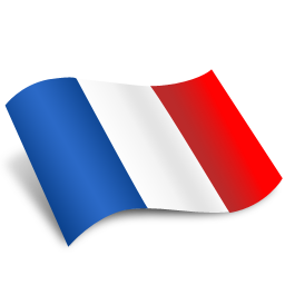France Flag Icon image #18754