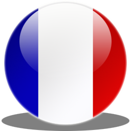 Library France Flag Icon