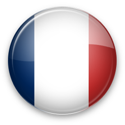 France Flag Icon image #18755