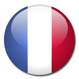 France Flag Icon image #18732