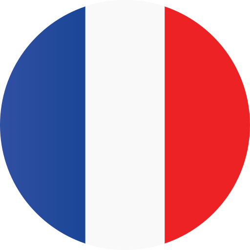 France Flag Icon image #18734