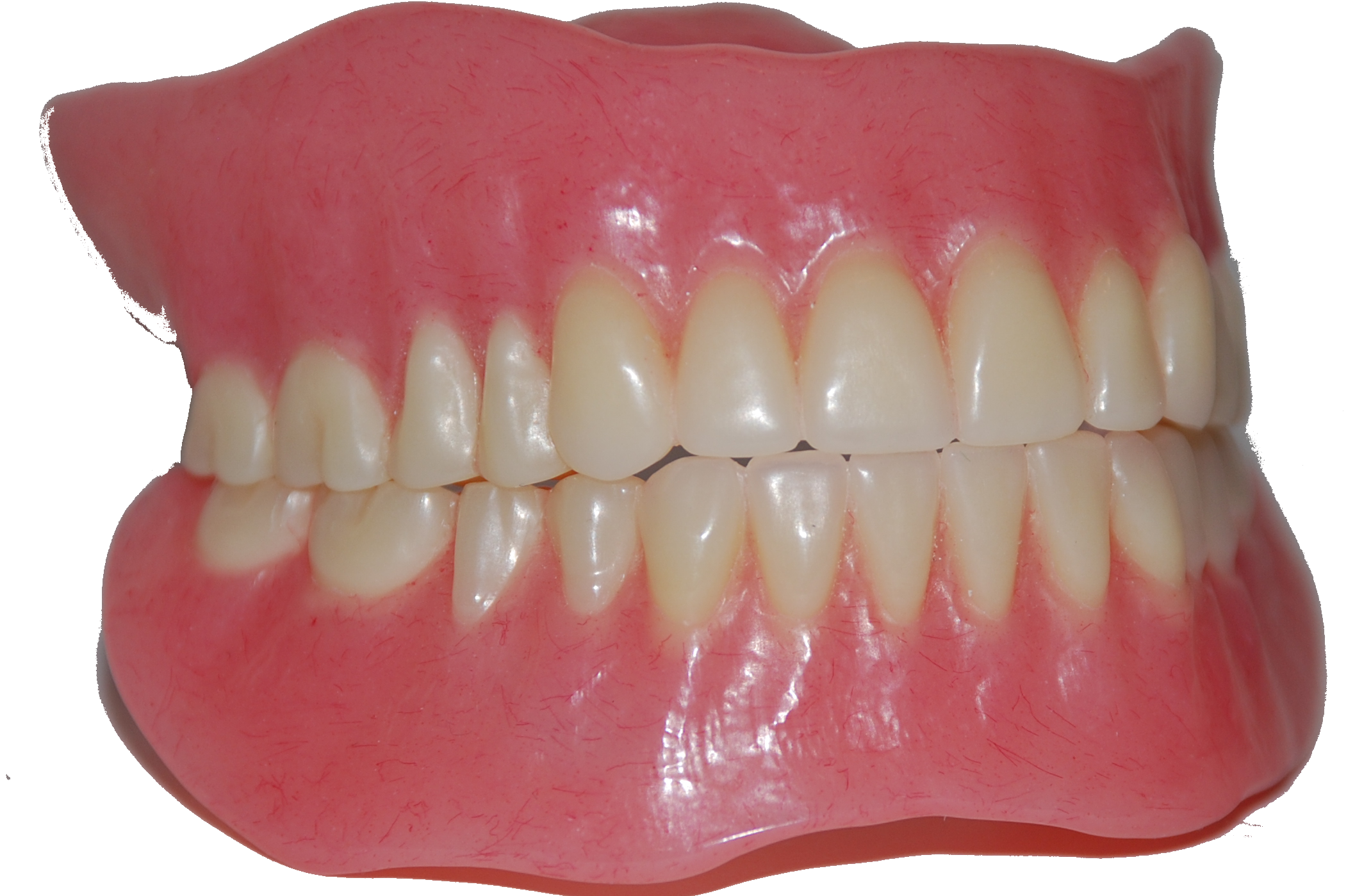 Free Download Teeth Png Images image #46549