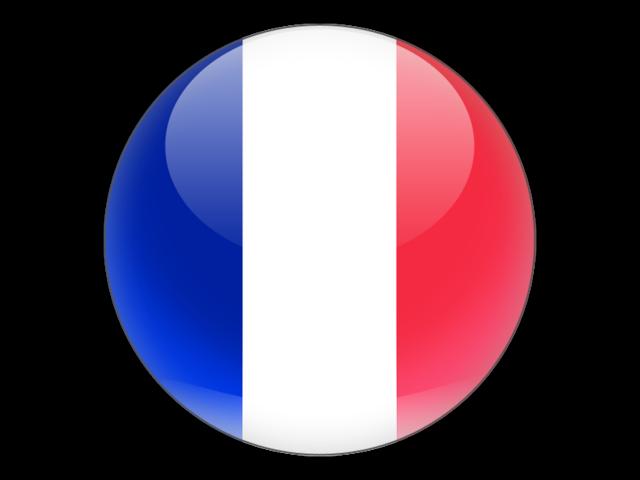 Resultado de imagen de french flag icon