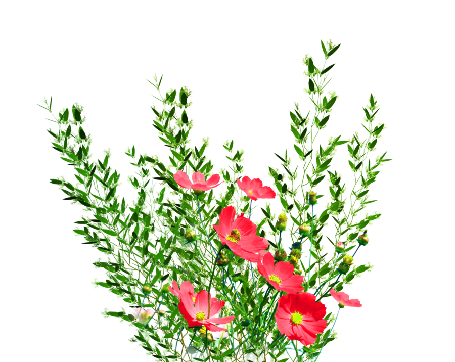Download And Use Flower Png Clipart image #28702