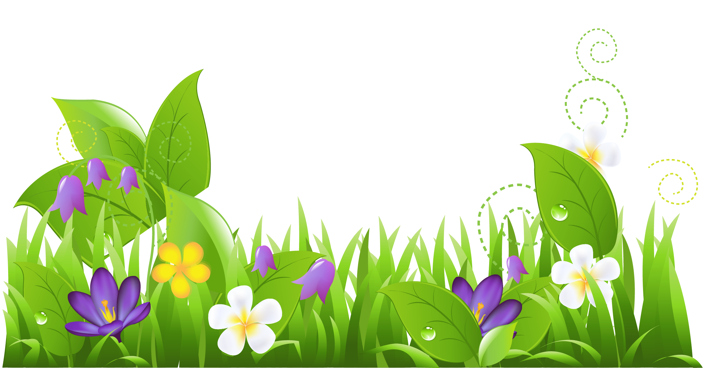 Download And Use Flower Png Clipart image #28711