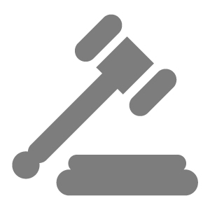 Gavel Vector Icon image #18680