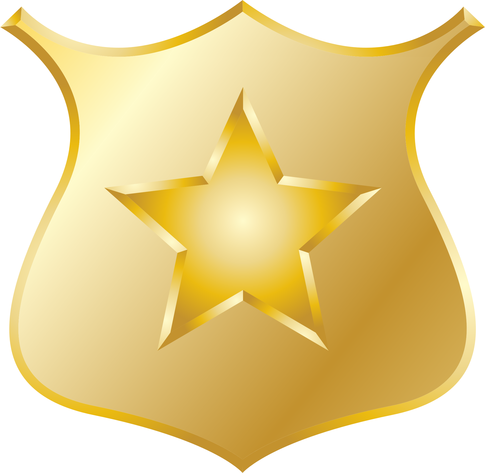 Gold Police Badge Icon image #12508