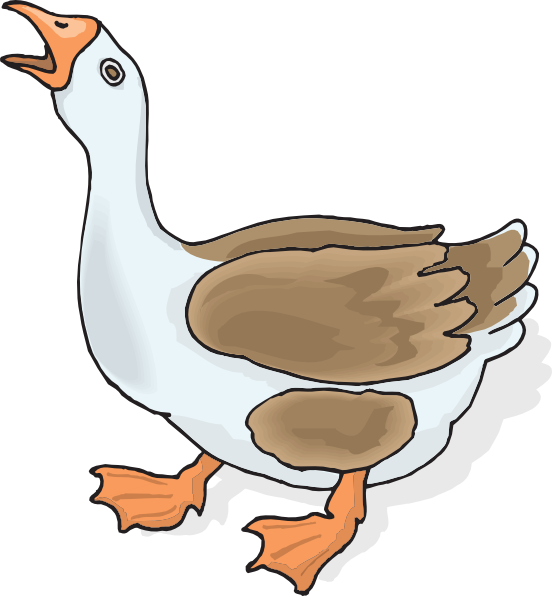Png Clipart Goose Collection