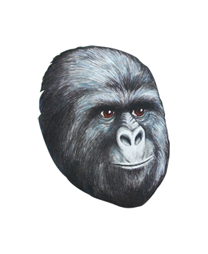 Gorillas Face Png image #37879