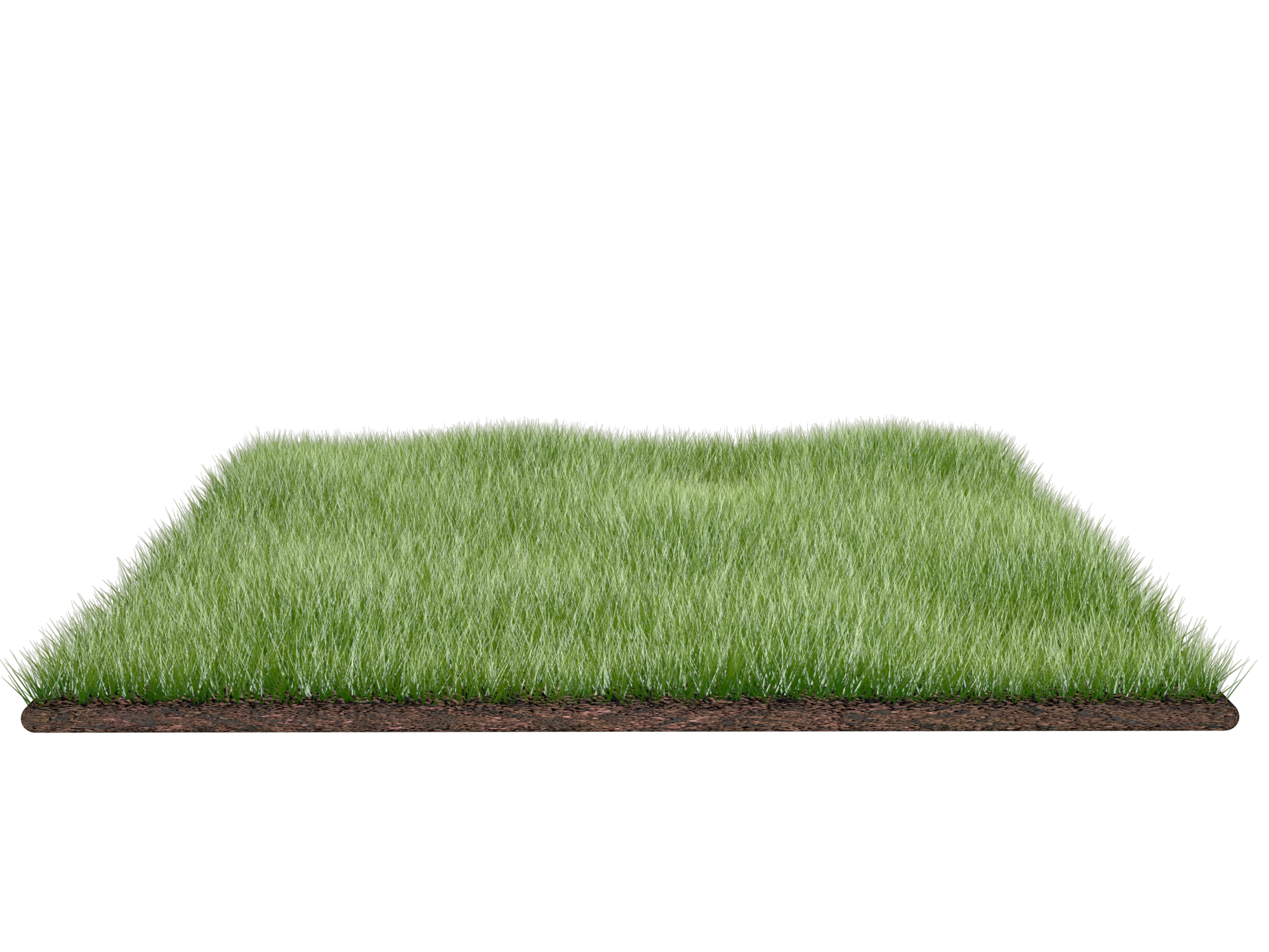 Grass Field Png image #4767