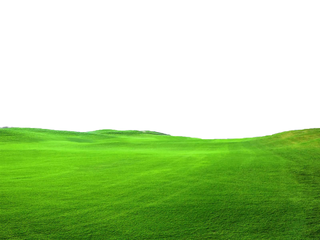 Grass Landscape Green Png Images image #44851
