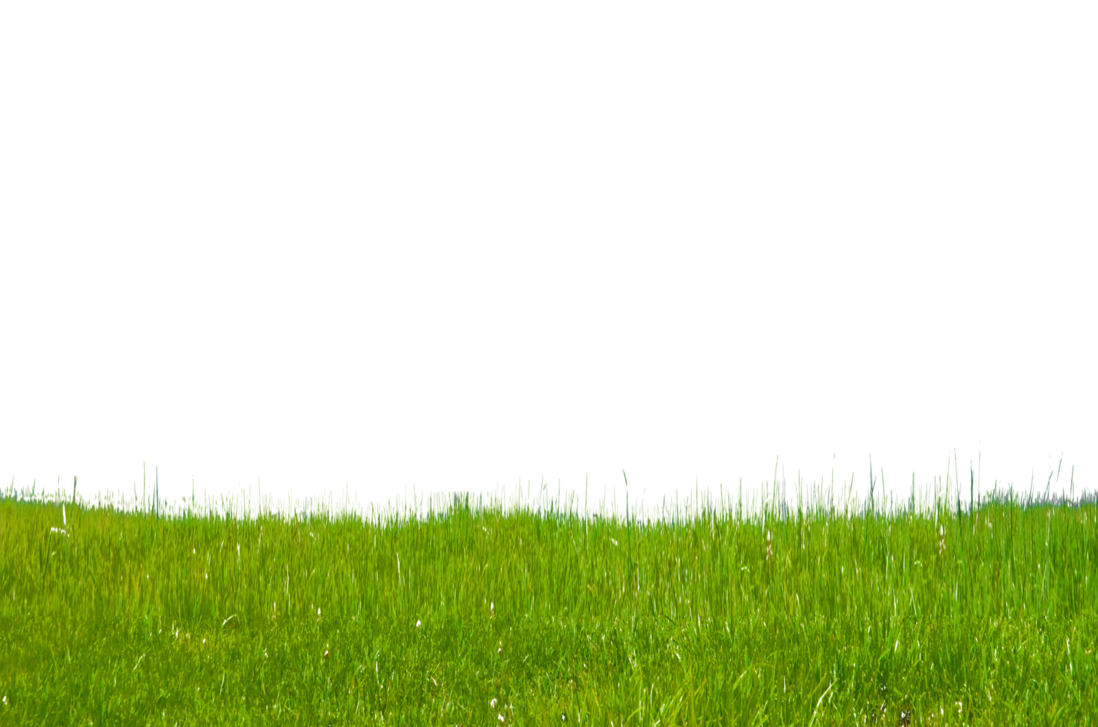 grass transparent png pictures free icons and png butterfly clipart images scenic butterfly clipart images black and white