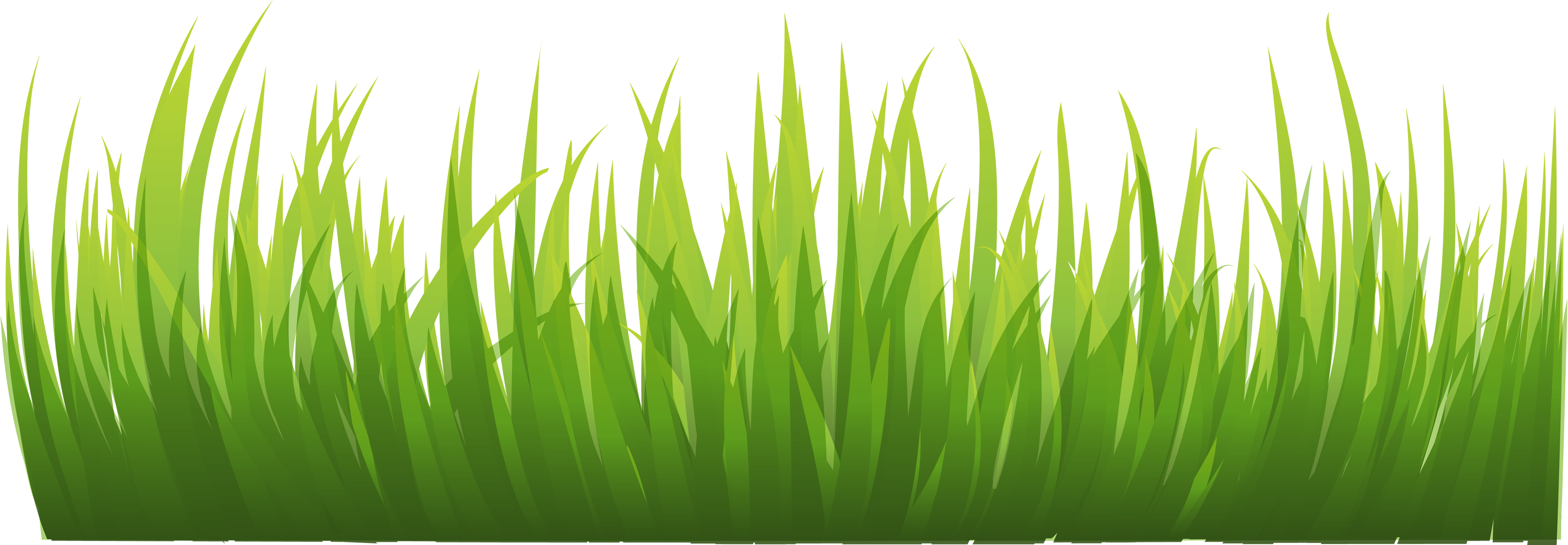 grass png image, green grass png picture