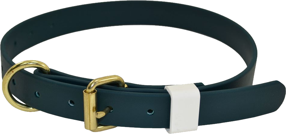 Green And Gold Metal Dog Collar Belt Dark Pictures image #48126