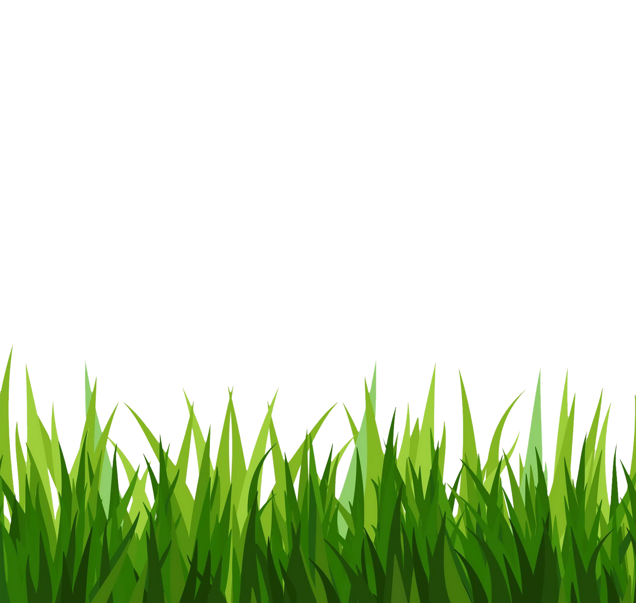 Green Grass Clipart image #44861