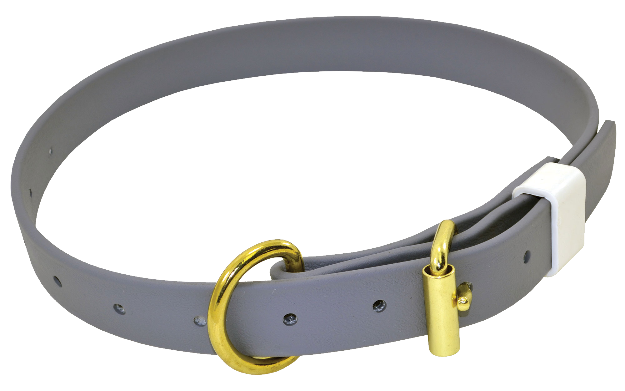 Grey Dog Collar Gold metal belt and transparent background