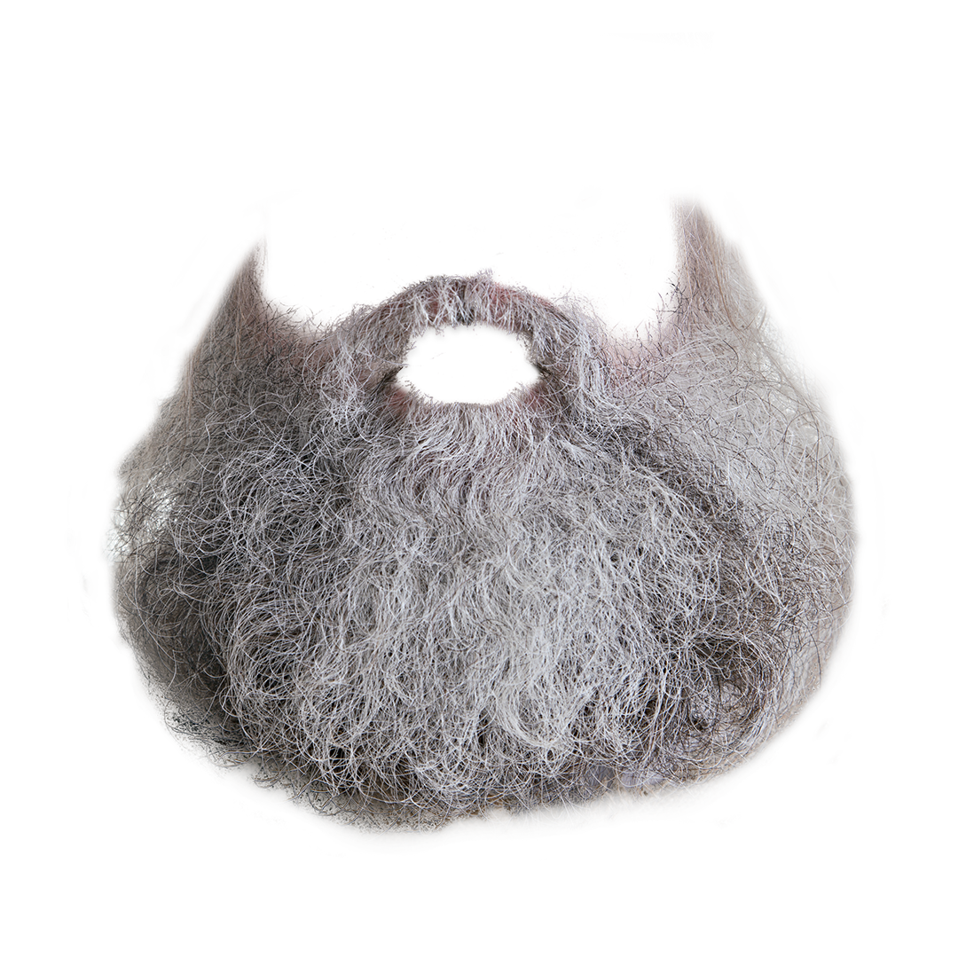 grow beard png