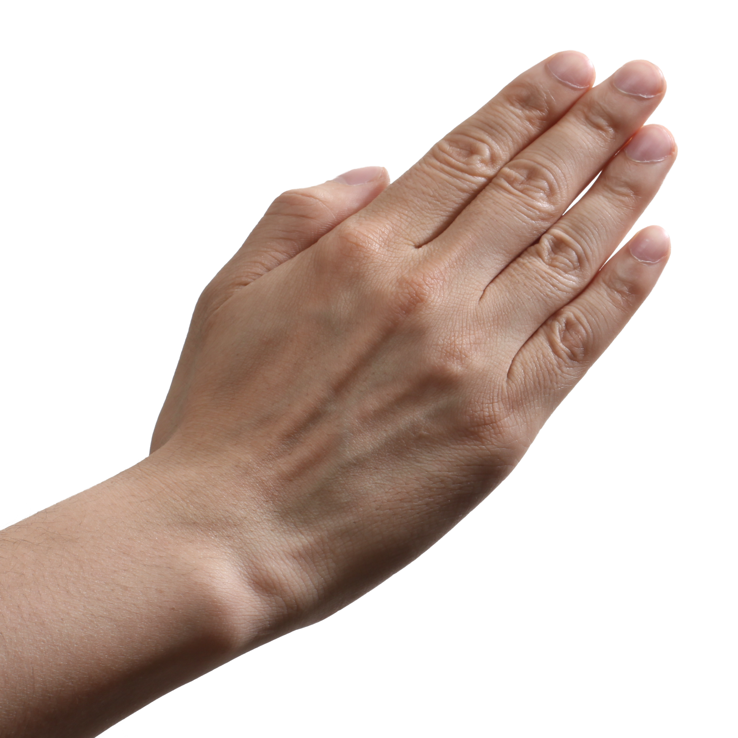 Hands Png, Hand Image Picture image #44749