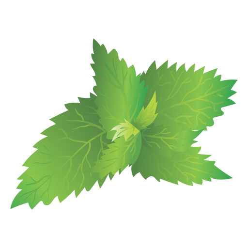Hd Nettle Picture Transparent Background image #48486