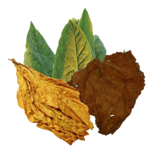 Hd Tobacco Varieties, Tobacco Leaves image #48044