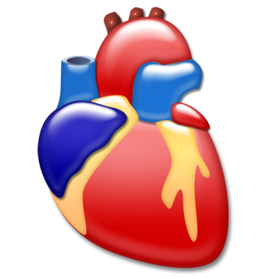 Heart Cardiology Icon 400x400, Cardiology HD PNG Download