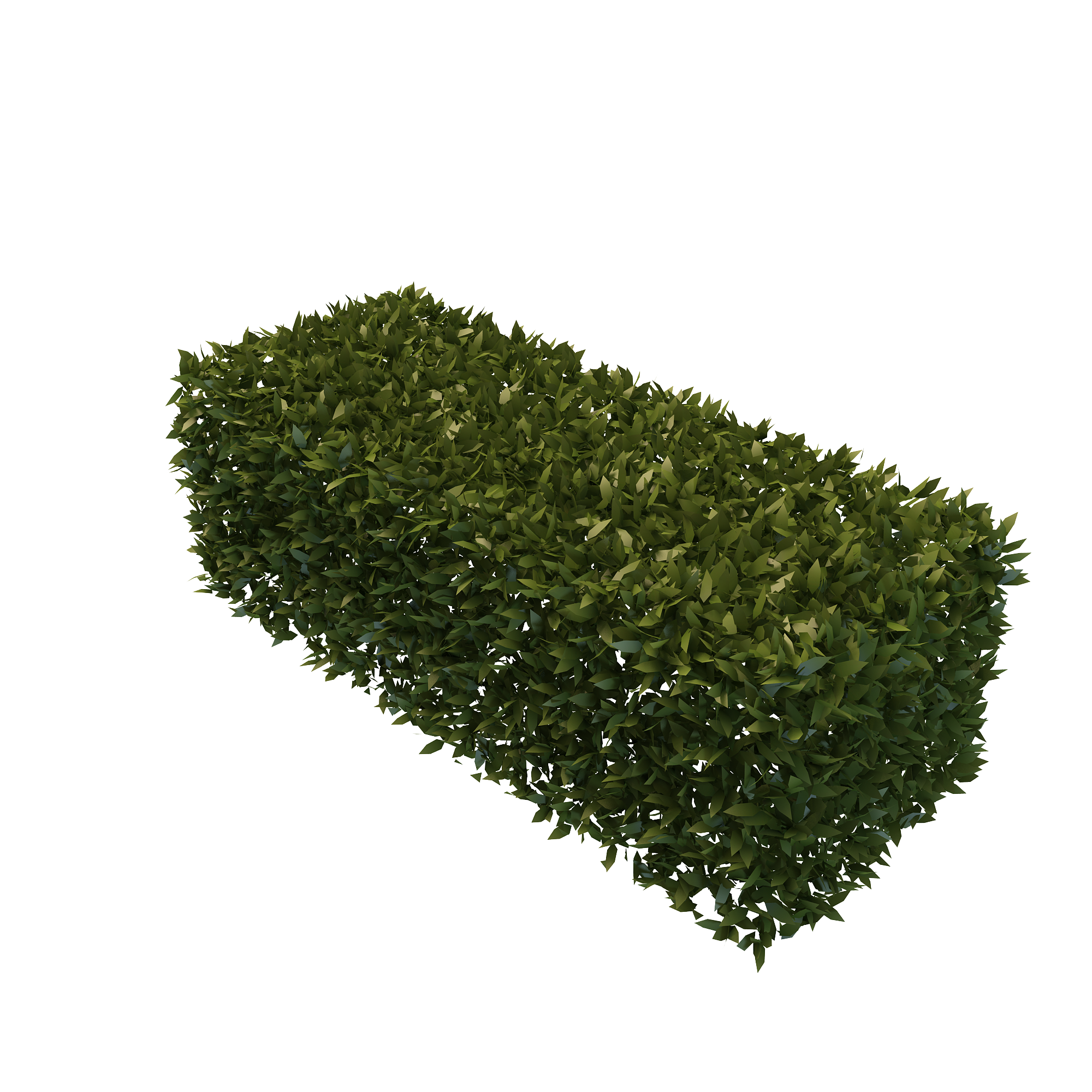 Best Free Hedges Png Image image #32440