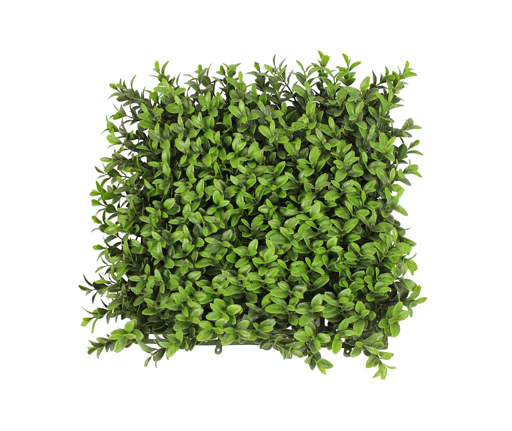 Free Download Of Hedges Icon Clipart image #32442