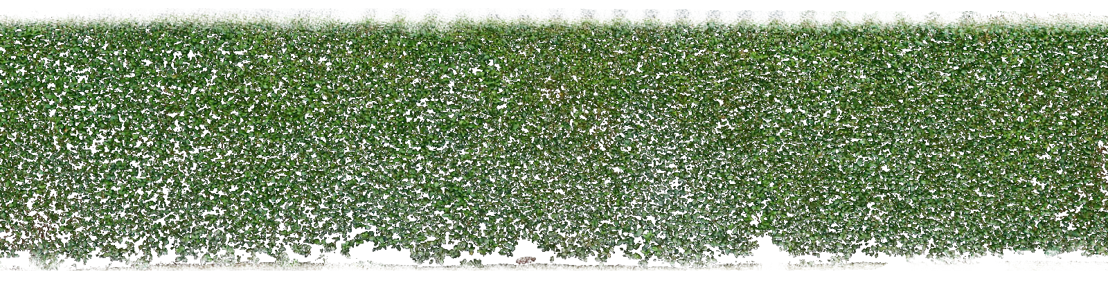 Background Png Hedges Hd Transparent image #32450