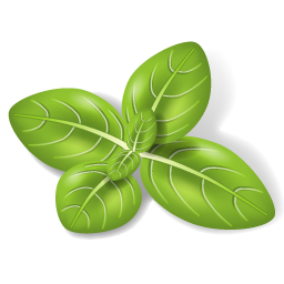 Herbs Leaves Icon image #33562