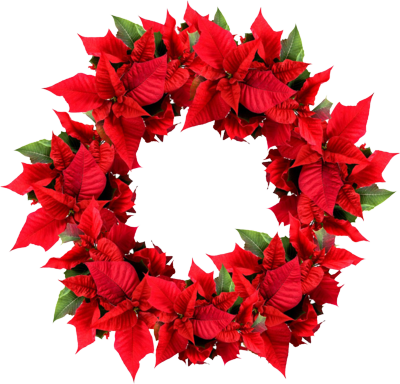 Holiday Wreath Png image #39771