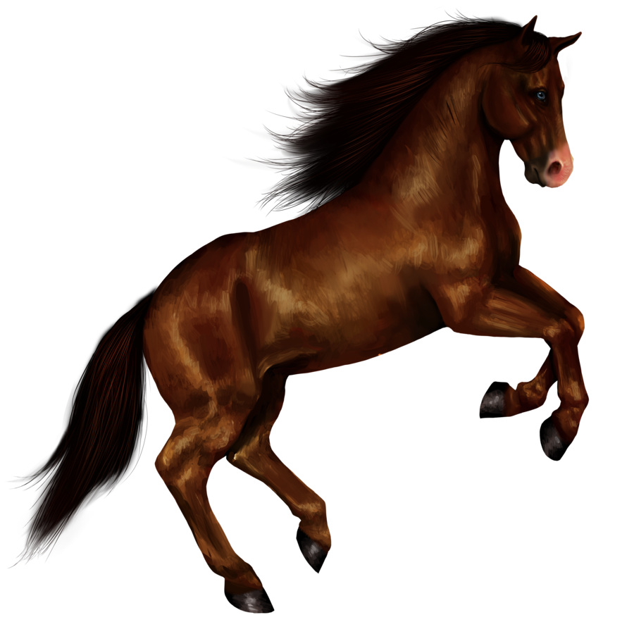 Use These Horse Vector Clipart image #22540