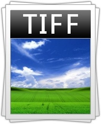Image filetype tiff icon