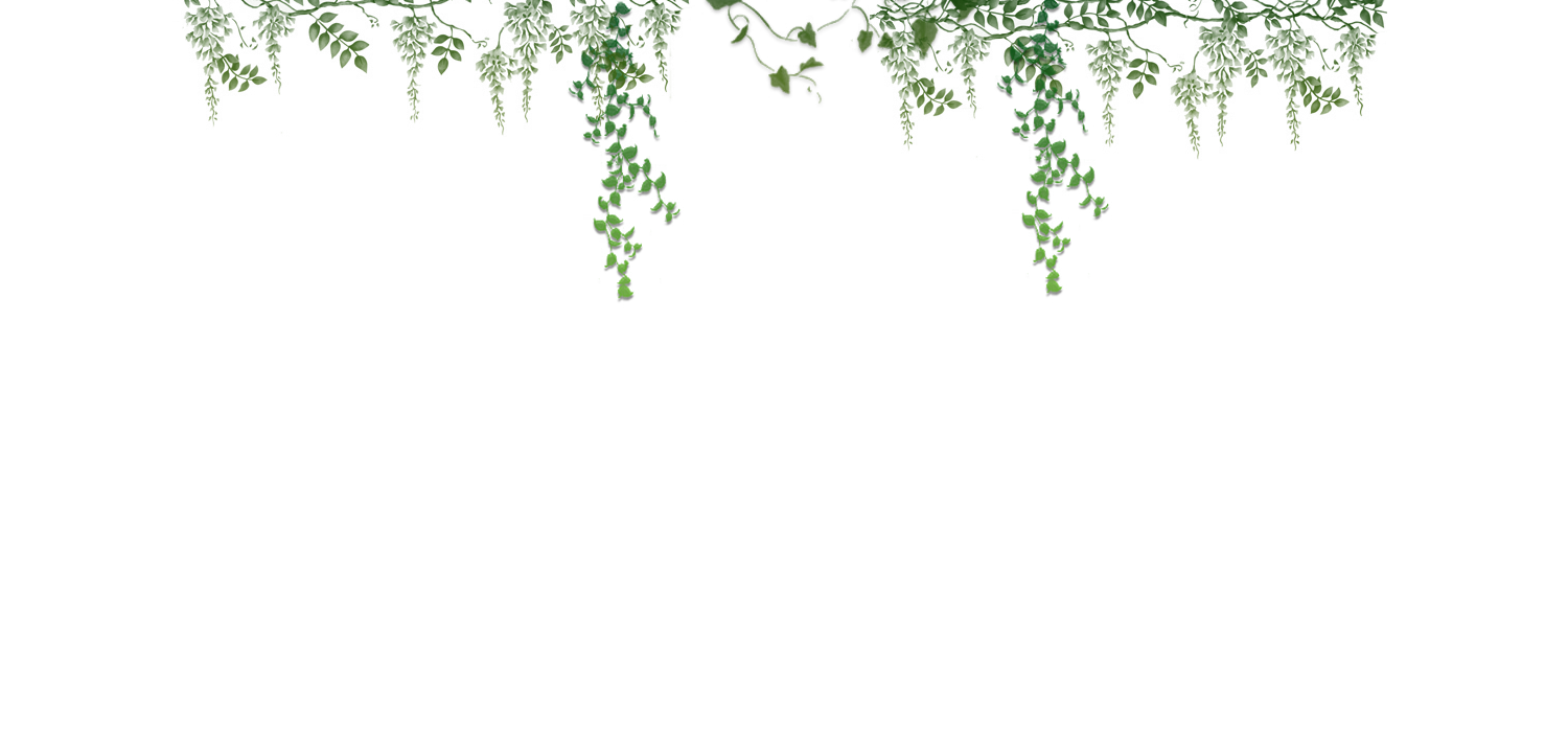 Ivy Vector Png image #46870