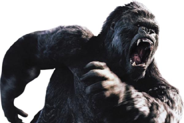 King Kong Gorilla Png image #37889