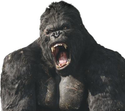 Download For Free Gorilla Png In High Resolution image #37895