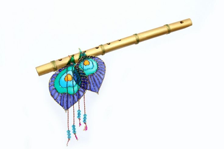 krishna flute with two peacock feathers picture vector