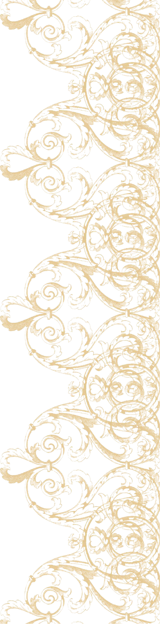 Download Png High quality Lace Border
