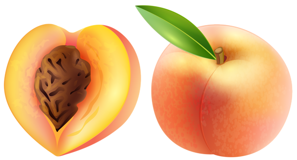 Large peach clipart image