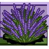Lavender Bush icon png