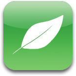 Icon Png Leaf image #7069